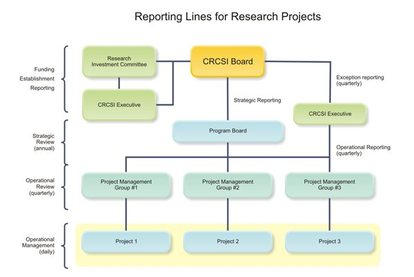 project reporting lines